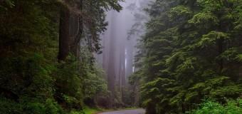 Parchi nazionali negli Stati Uniti: quale assicurazione Viaggio scegliere