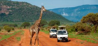 Safari nei parchi e riserve del Kenya